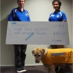 guide dogs donation